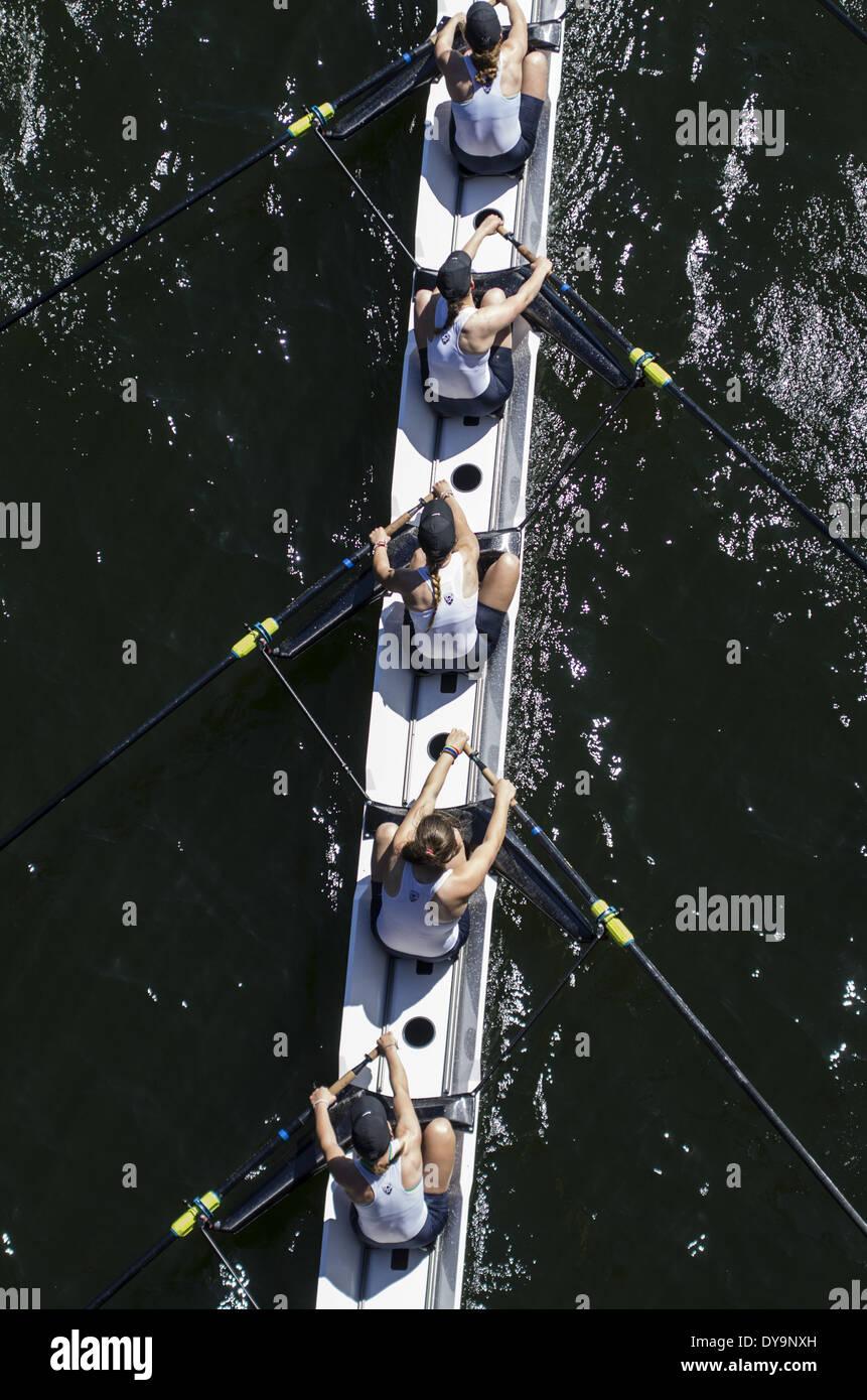 Five rowers in UW women's eight boat during intercollegiate crew race. Stock Photo