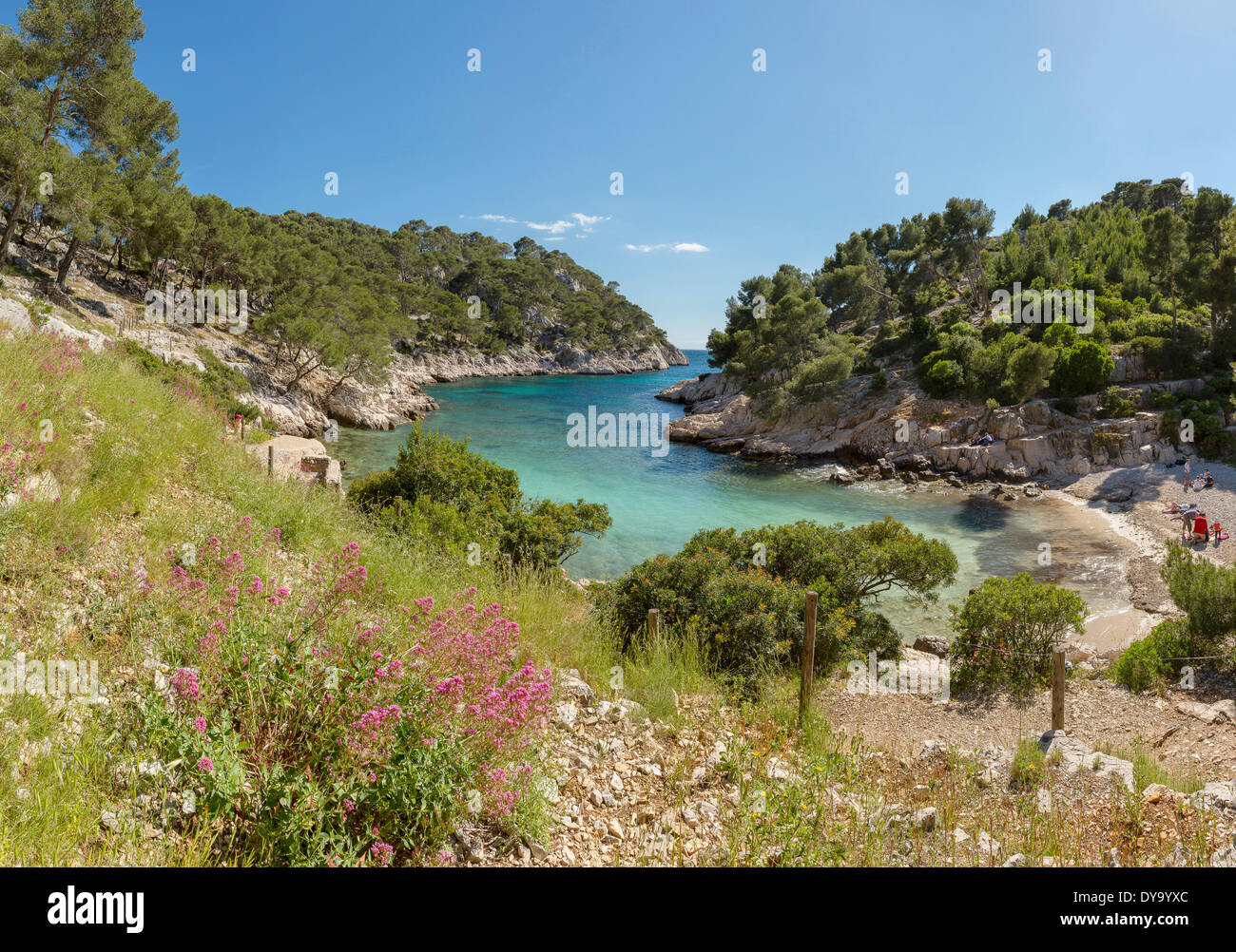 Calanque de Port Pin calanque rocky bay landscape water trees spring mountains sea people Cassis Bouches du Rhone France Euro - Stock Image