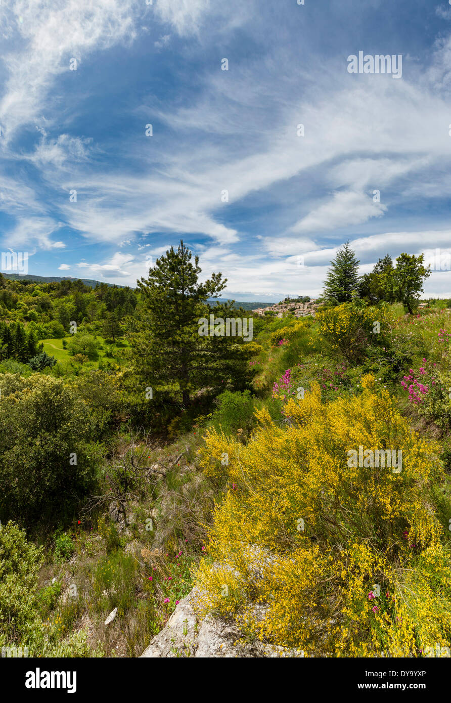 vue, town, village, forest, wood, trees, spring, mountains, hills, Bonnieux, Vaucluse, France, Europe, - Stock Image