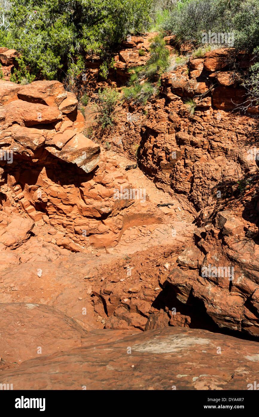 Gully, Baldwin Trail, Sedona, Arizona, USA - Stock Image