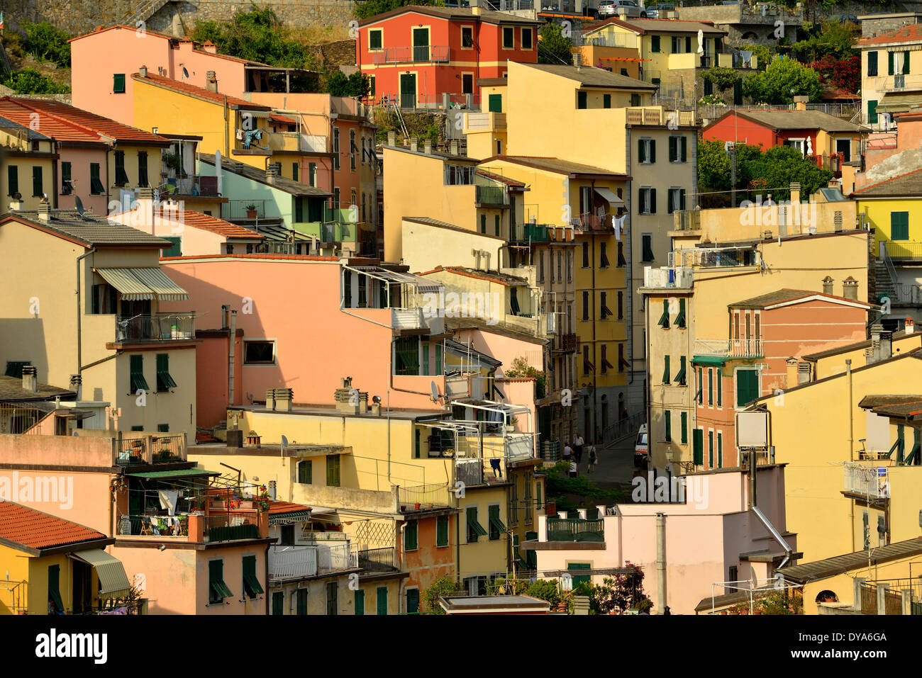 Europe Mediterranean Riviera Italian Italy Cinque Terre Rio Maggiore Window  Windows Row Houses Apartments Apartment