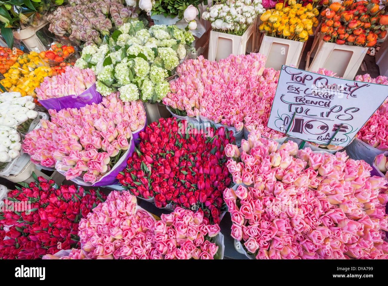 England London Columbia Road Flower Market Flower Display Stock Photo Alamy