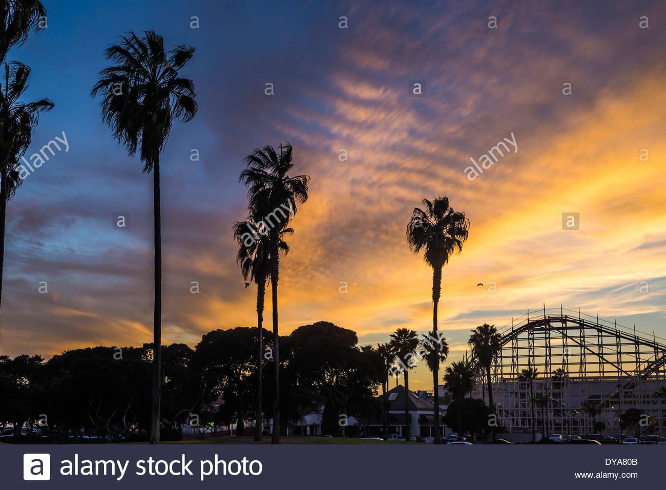 Dog Park New Cherry Long Beach