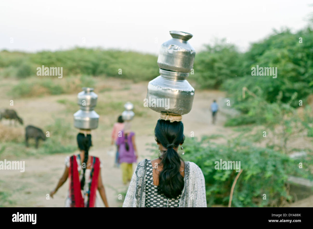 Women carrying water from the well ,Kutch ,India - Stock Image