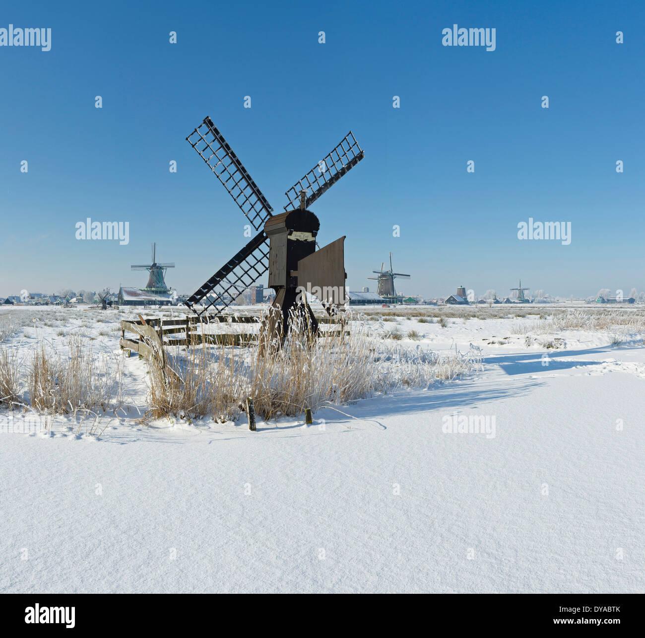 Netherlands, Holland, Europe, Zaandam, North Holland, windmill, field, meadow, winter, snow, ice, Windmills - Stock Image