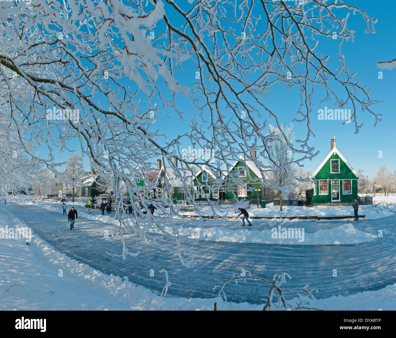 Netherlands Holland Europe Zaandam North Holland city village forest wood trees winter snow ice people frost scating skate - Stock Image
