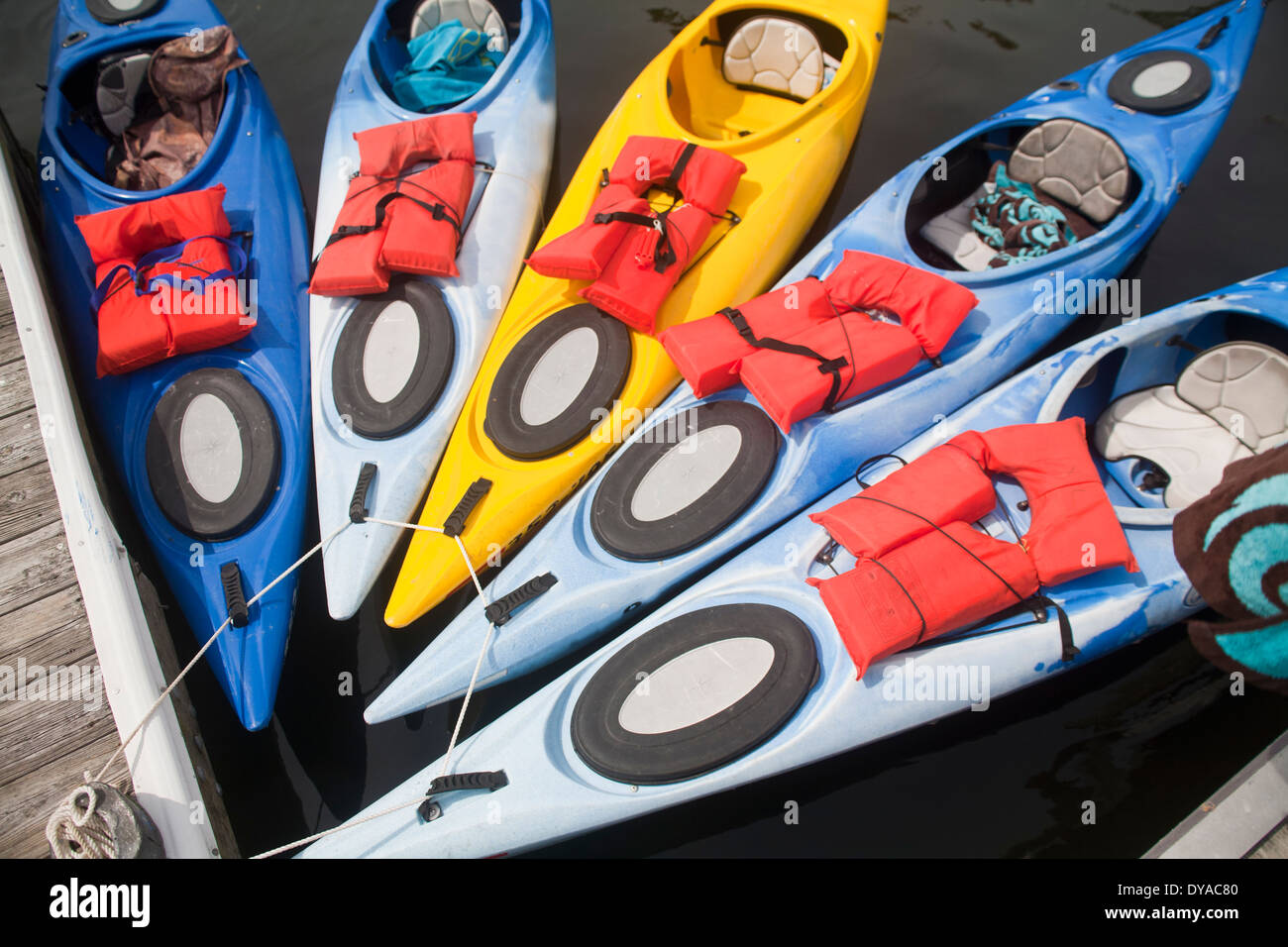 Five kayaks tied up to a dock while floating in Kings Bay in Crystal River Florida - Stock Image