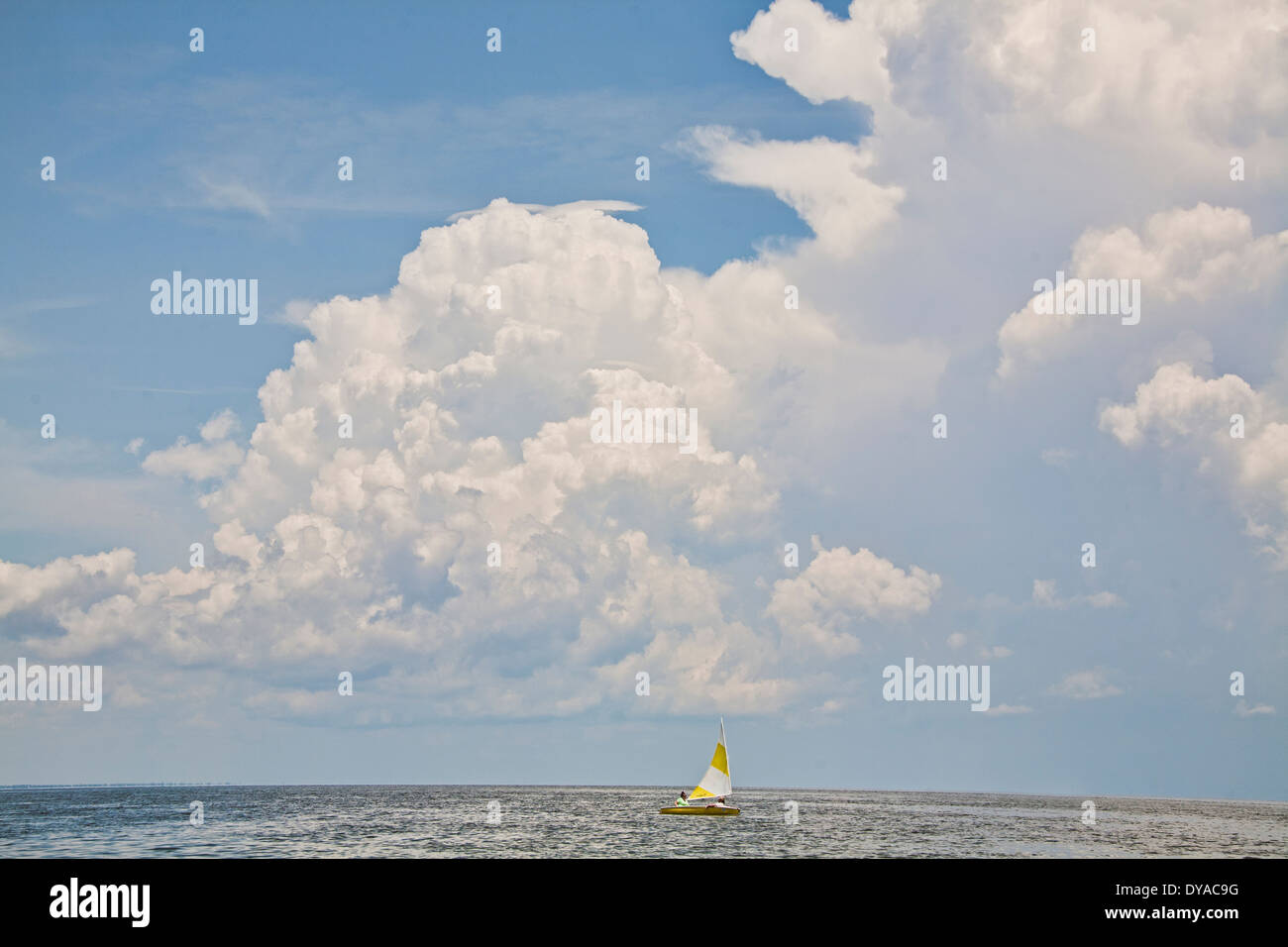 Small Sailboat Sailing in Florida on the Gulf of Mexico with big fluffy clouds above the horizon - Stock Image