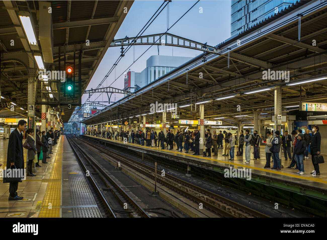 Japan, Asia, Tokyo, Akihabara, city, commute, rush hour, people, early, morning, order, station, train, waiting, work - Stock Image