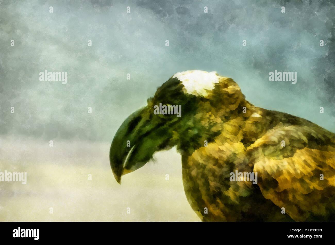 Bronze raven (Latin Corvus crassirostris) - bird of the family Corvidae,birds; illustrations; ,watercolor,Aquarelle - Stock Image