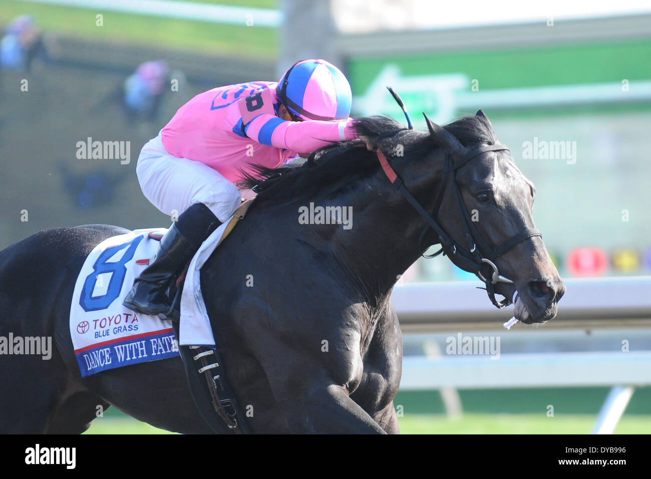 Lexington, KY, USA. 12th Apr, 2014. Aoril 12, 2014: Dance with Fate and jockey Corey Nakatani win the G1 Toyota Blue Grass S. at Keeneland for owners Sharon Alesia, Bran Jam Stable and Ciaglia Racing and trainer Peter Eurton.Jessica Morgan/ESW/CSM/Alamy Live News - Stock Image
