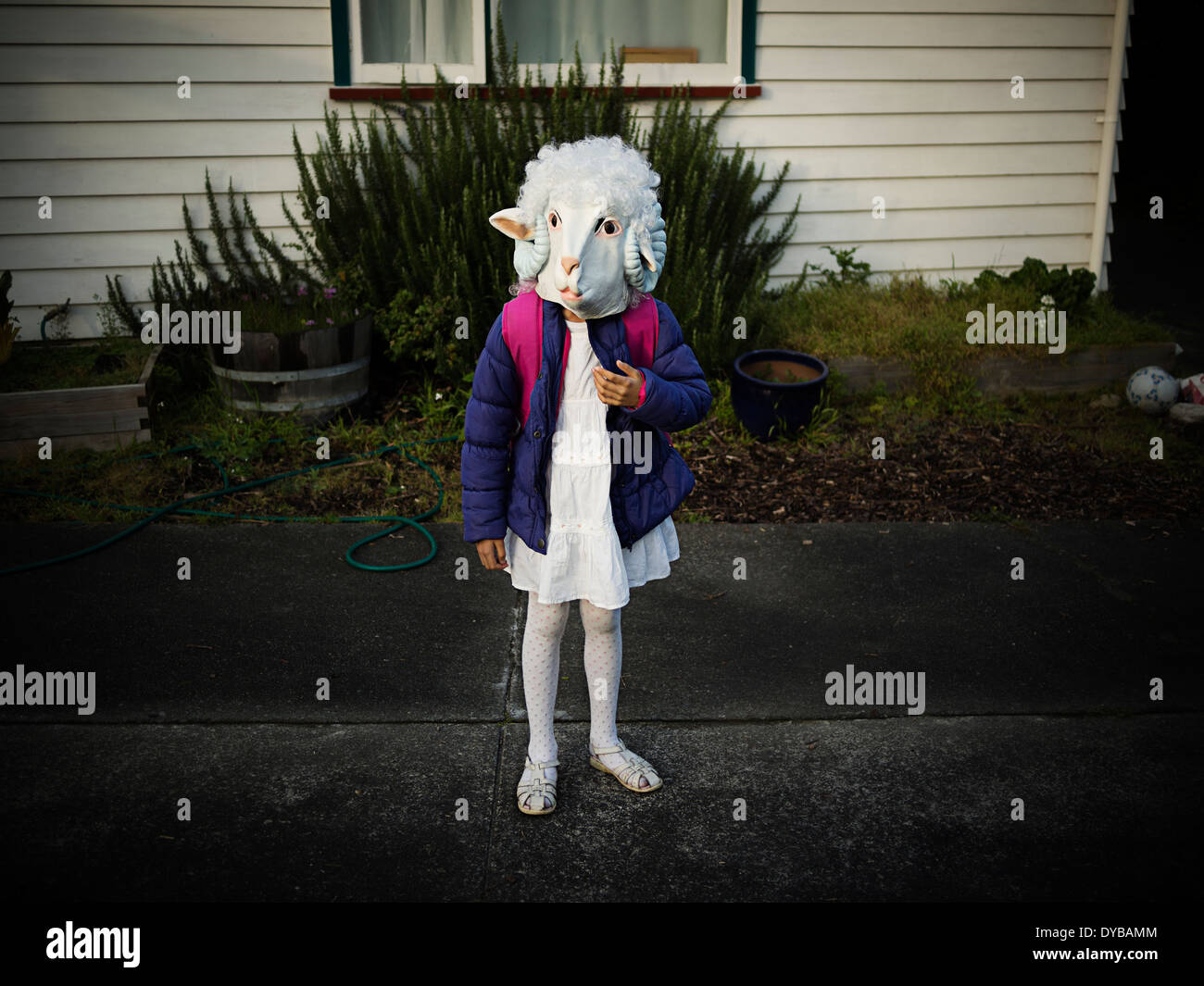 Dress up day at school: girl sets off on walk to school dressed as a sheep Stock Photo