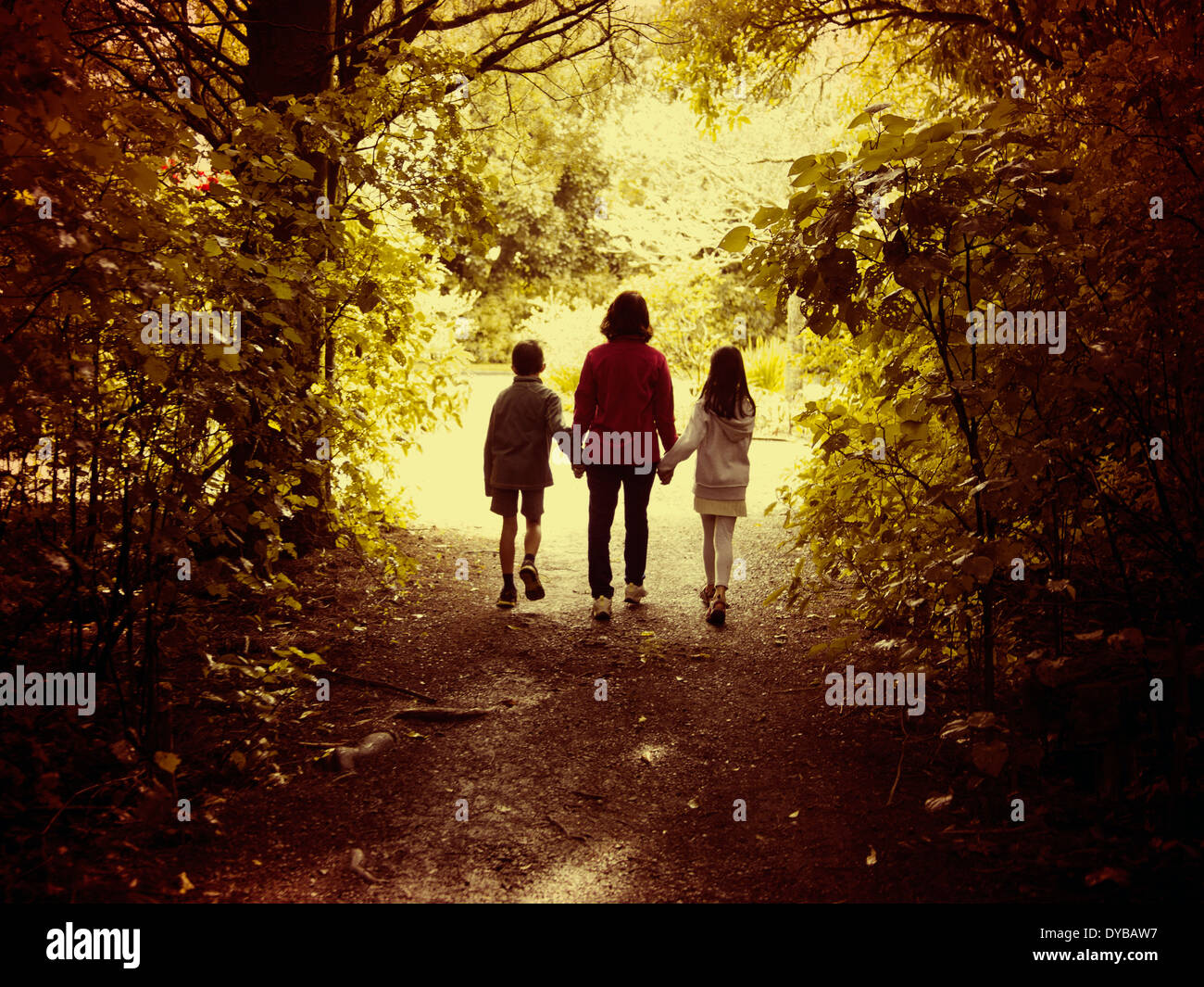 Mother and children walk in woods - Stock Image