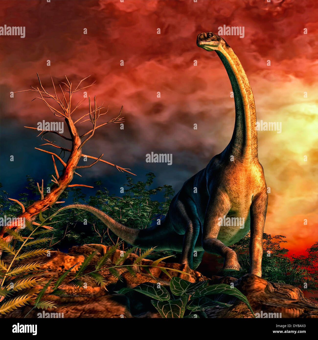 Jobaria was a sauropod dinosaur that lived during the middle Jurassic Period. Stock Photo