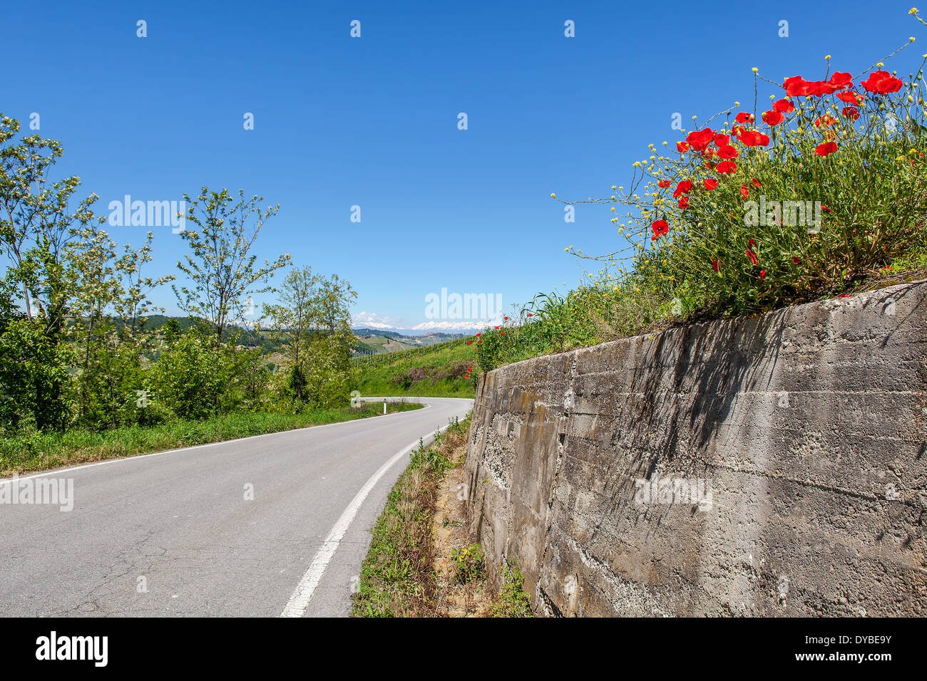 Asphalt road among green hills and red poppies under blue sky in Piedmont, Northern Italy. Stock Photo