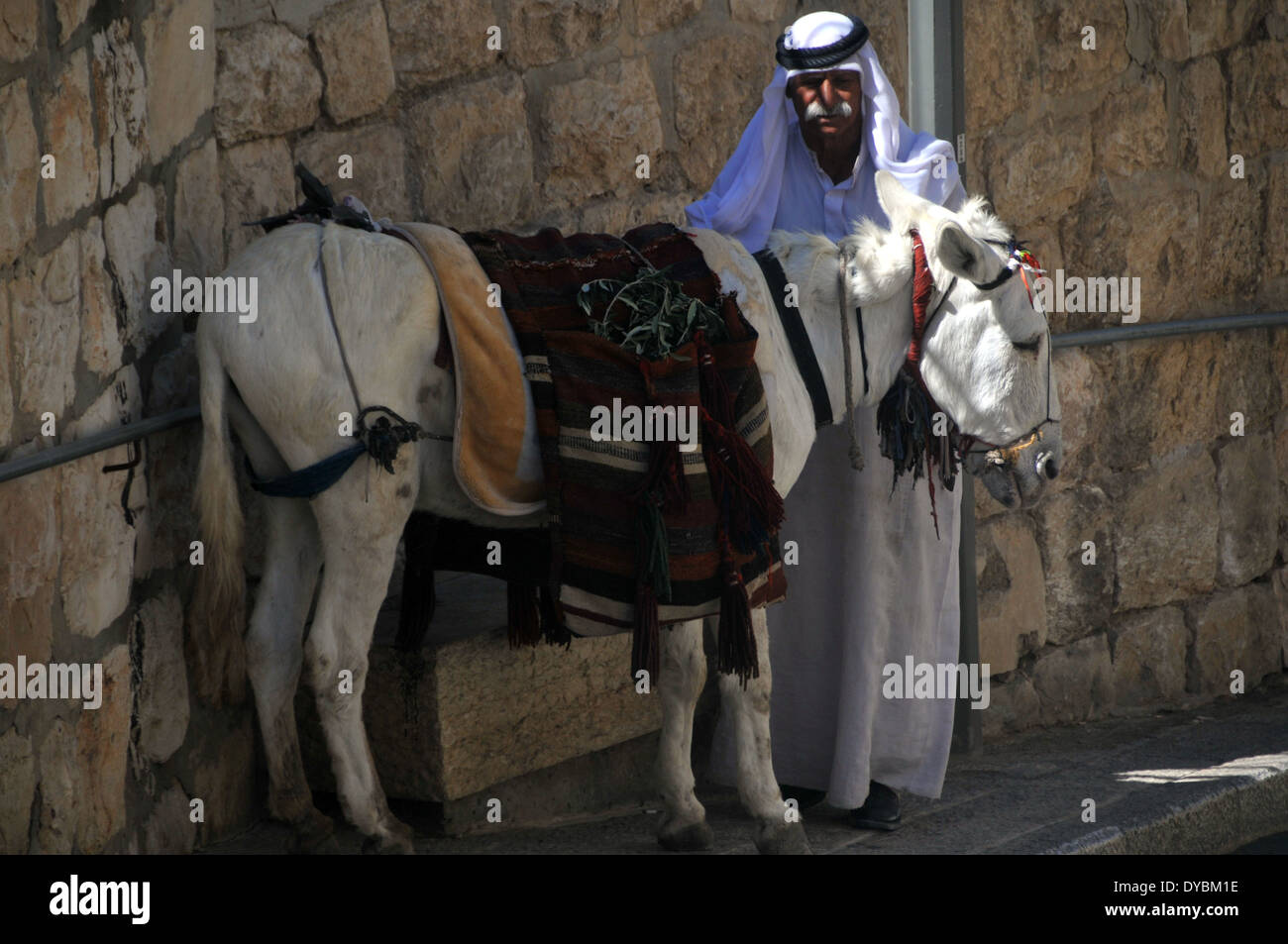 Man in Arabic tunic and donkey, Jerusalem, Israel - Stock Image