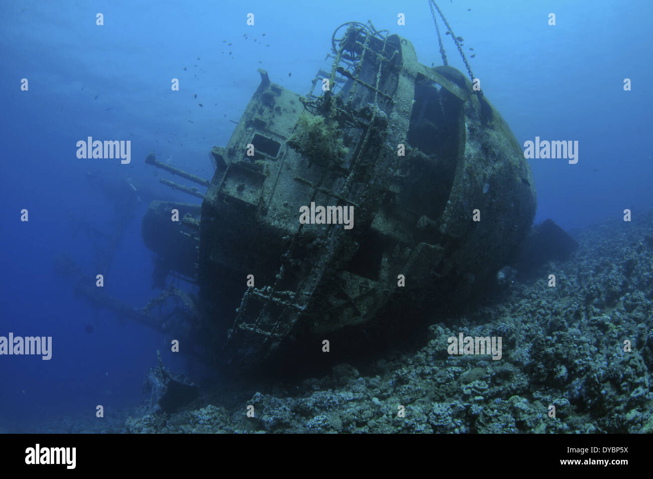 Wreck of the Cedar Pride, Gulf of Aqaba, Red Sea, Jordan - Stock Image