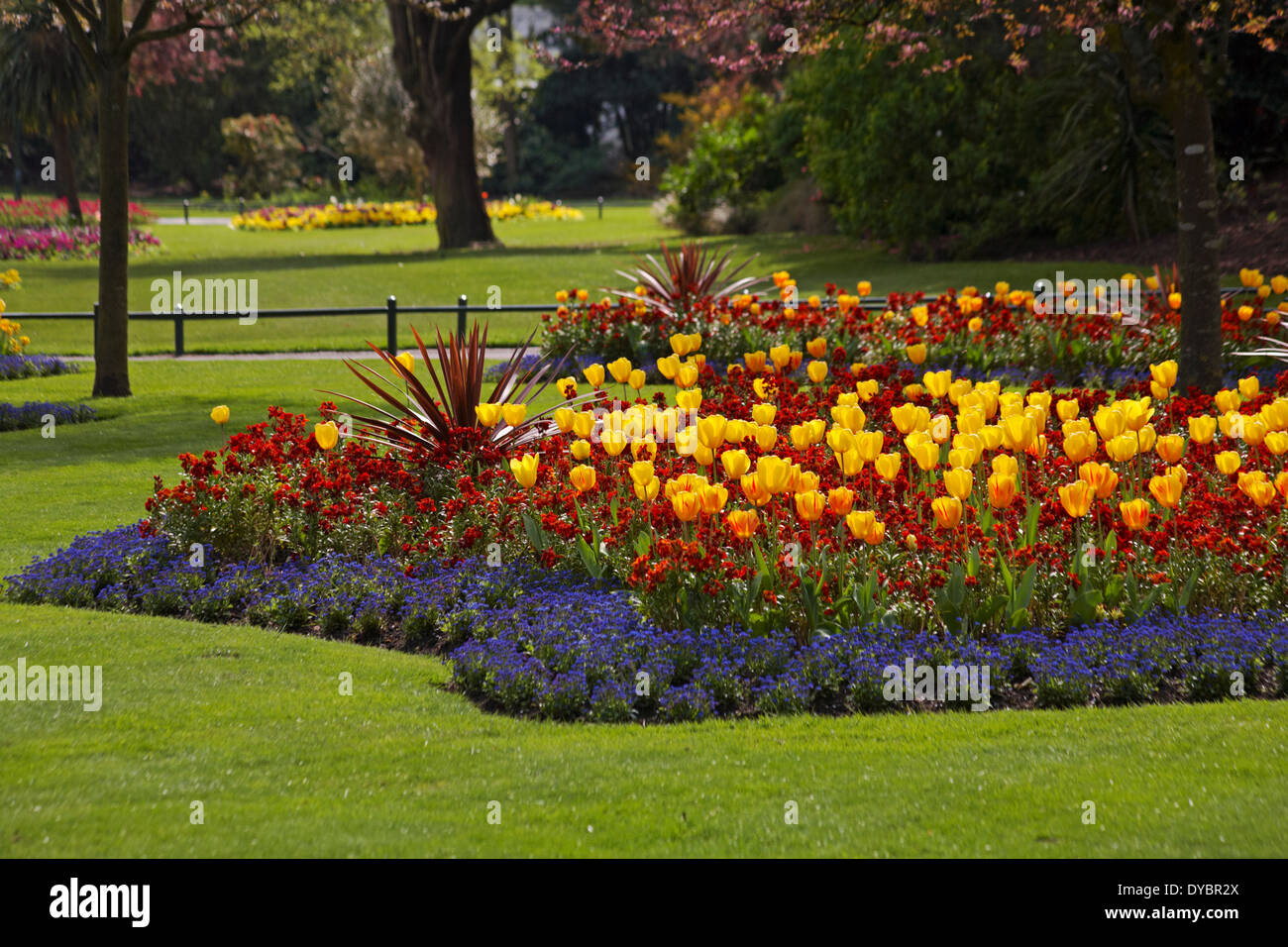 Colourful spring flower beds at bournemouth gardens in april stock colourful spring flower beds at bournemouth gardens in april mightylinksfo