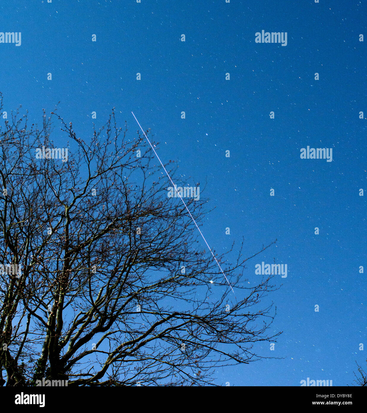 Aberystwyth, Wales, UK - With the full moon lightening the night sky, this time exposure shows the trail of the International Space Station over a 30 second period as it crosses the UK, with the branches of a beech tree in the foreground  - 13-April-2014, Photo Credit: John Gilbey/Alamy Live News. - Stock Image