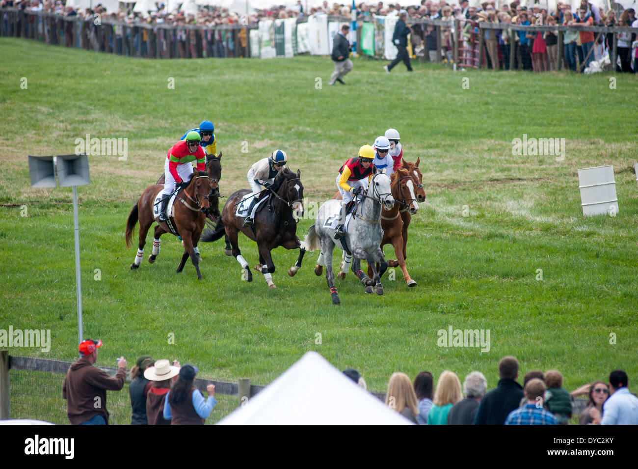 Manor Races steeple chase race, Maryland - Stock Image