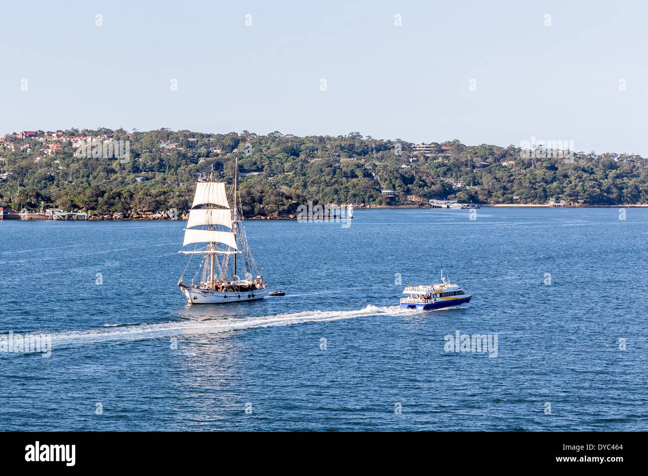 A brigantine sailing ship in Sydney Harbour - Stock Image