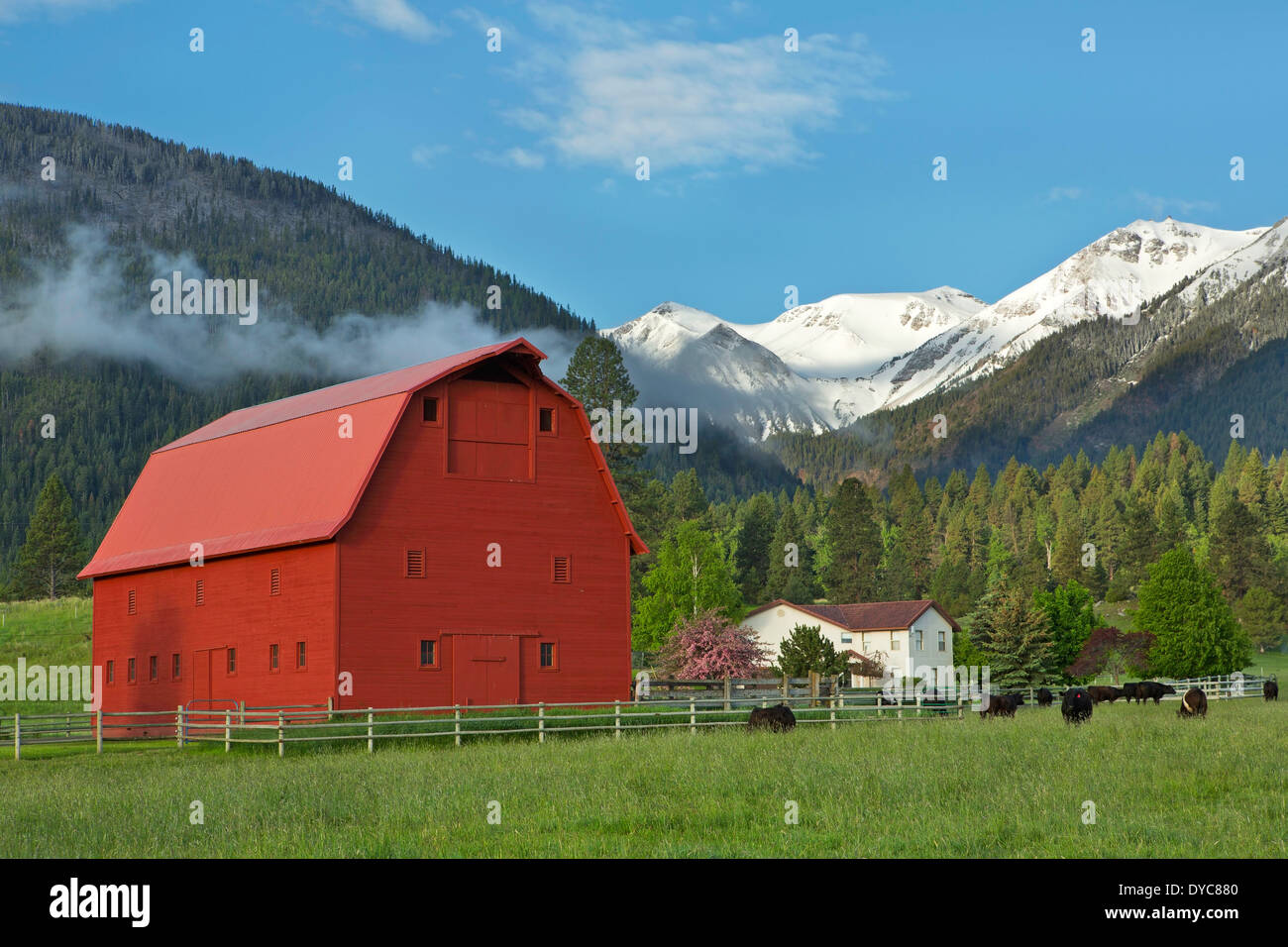 The agricultural and ranching area near Joseph, Oregon lies below the Wallowa Mountains in the spring. USA Stock Photo