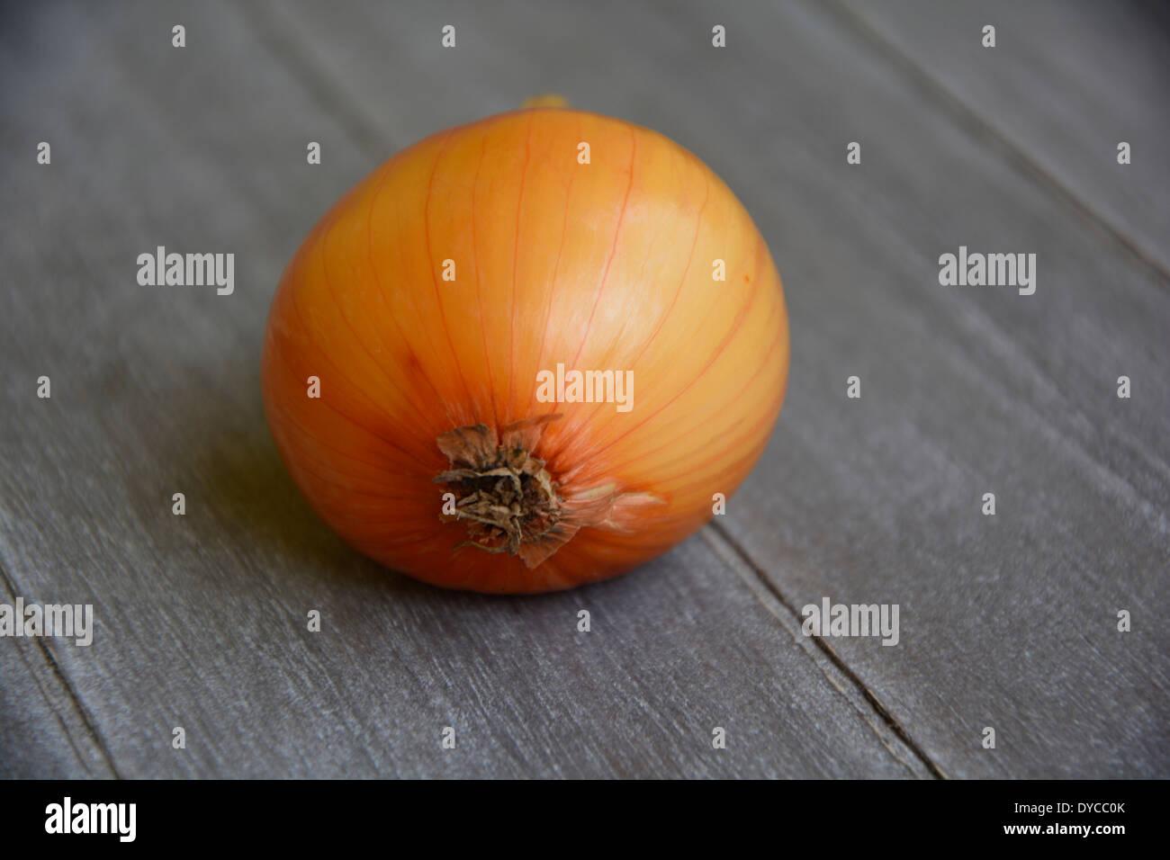 yellow onion on a grey wooden table tabletop background macro close up eine ganze gelbe Zwiebel auf grauem Holztisch Holzbrett - Stock Image