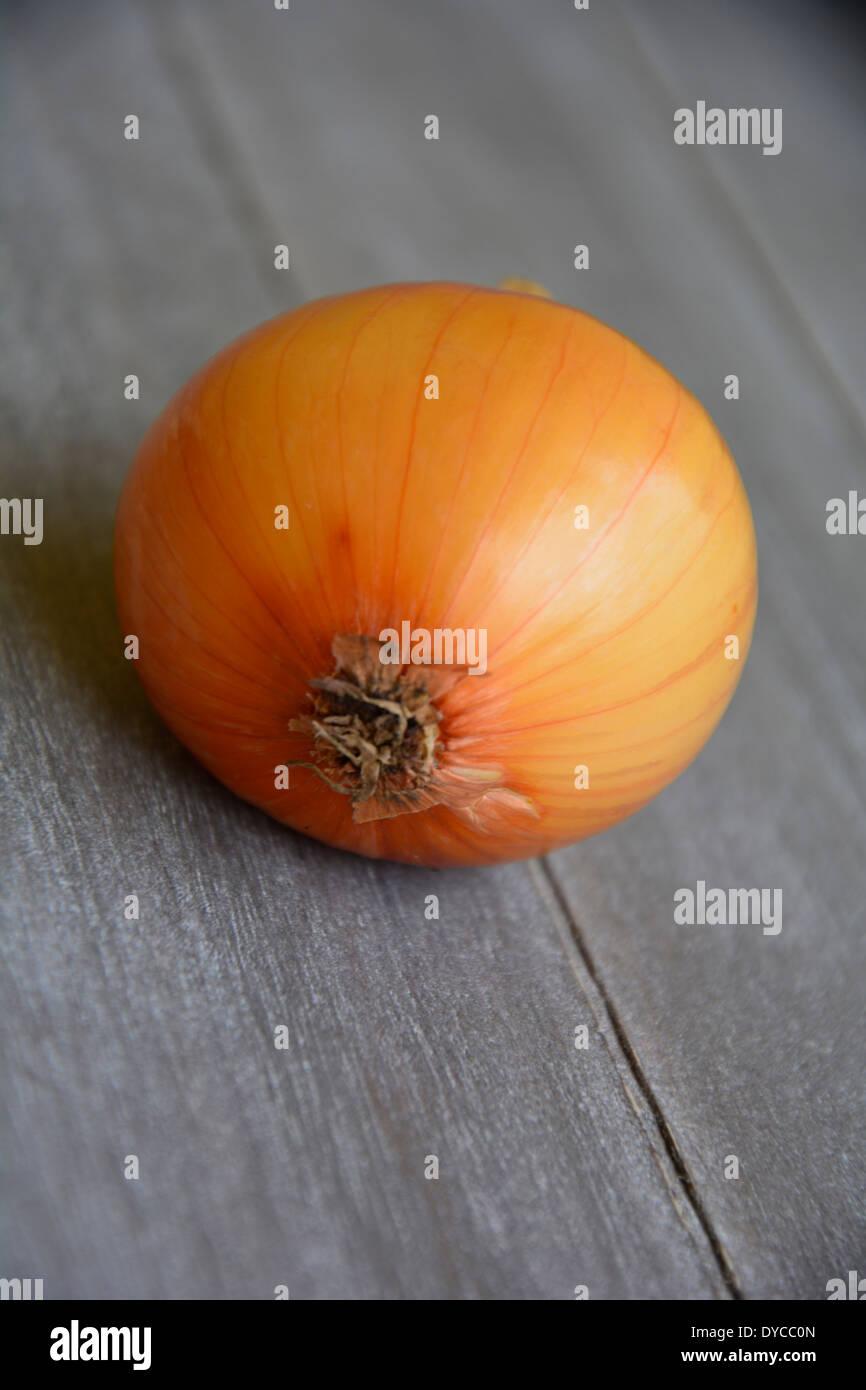 fresh yellow onion on grey wooden table background tabletop macro close-up eine ganze gelbe Zwiebel  auf einem grauen Holztisch - Stock Image