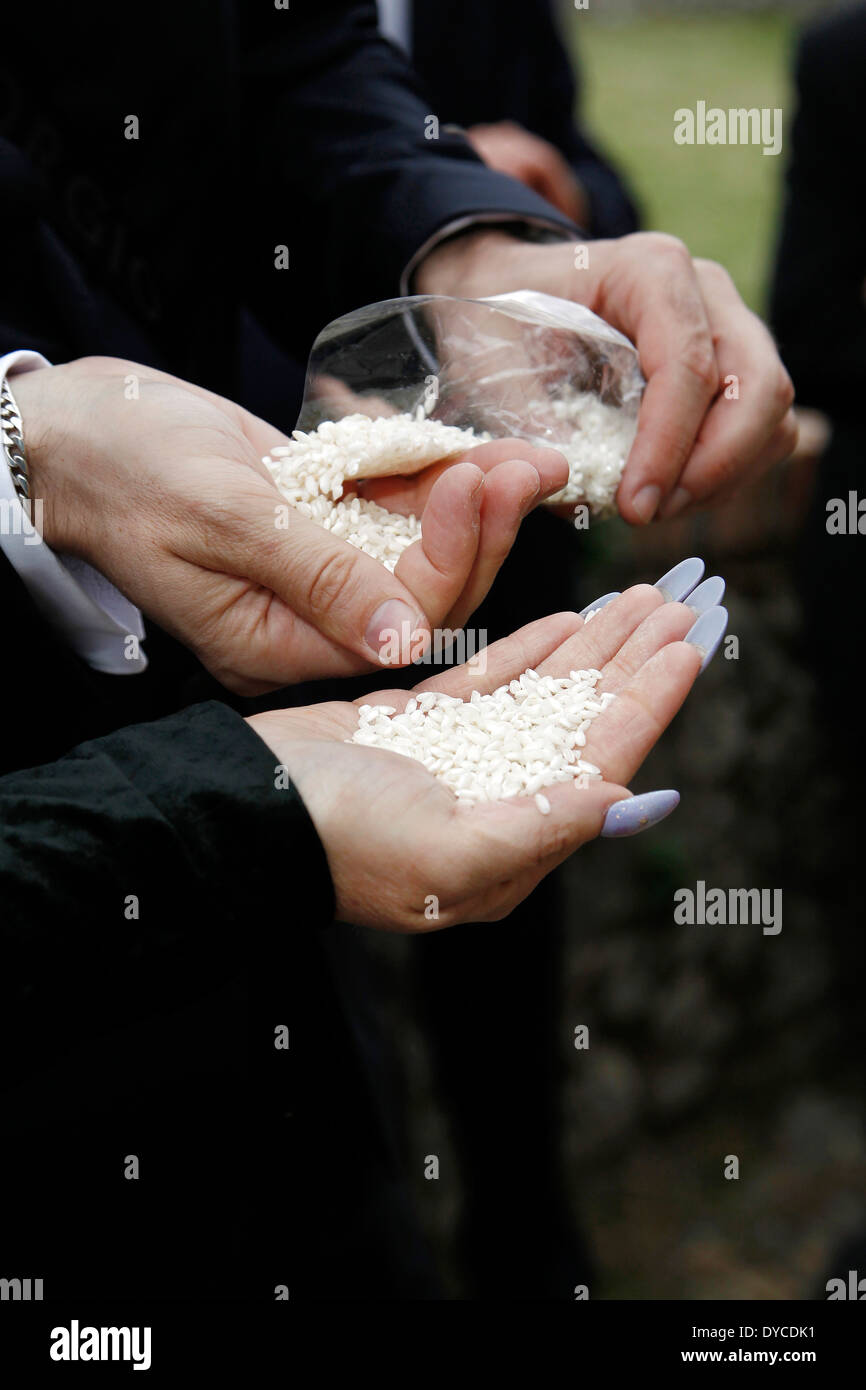 Hands ready to throw the rice to the bride - Stock Image
