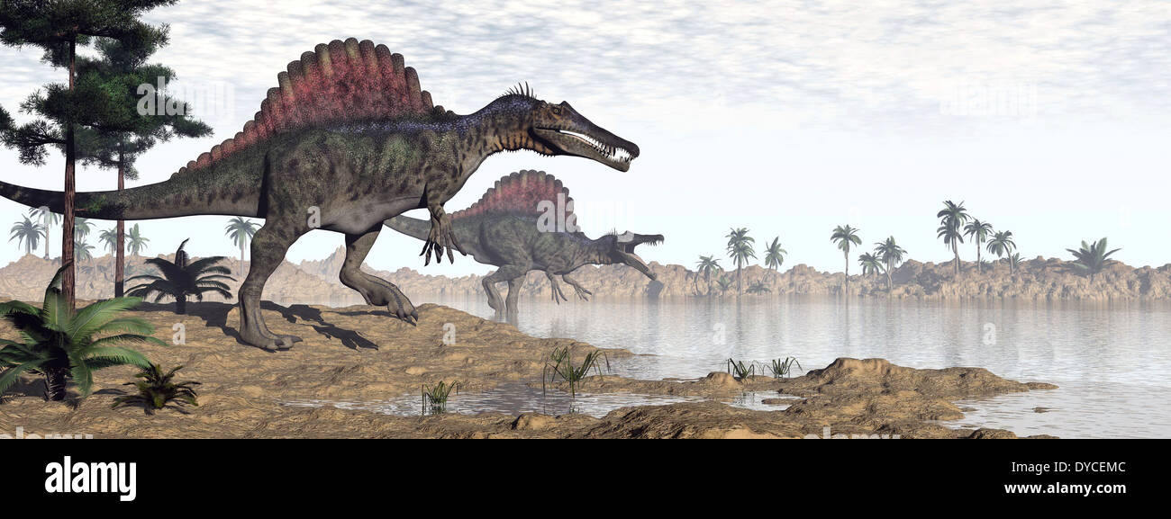 Two Spinosaurus dinosaurs walking to the water in a desert landscape. - Stock Image