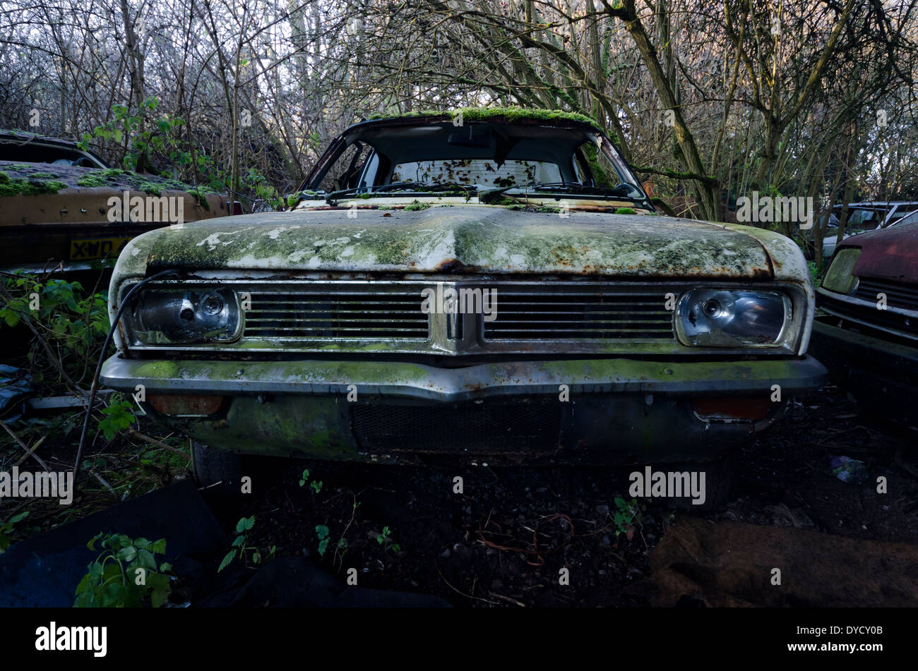 Abandoned car, left to rot. - Stock Image