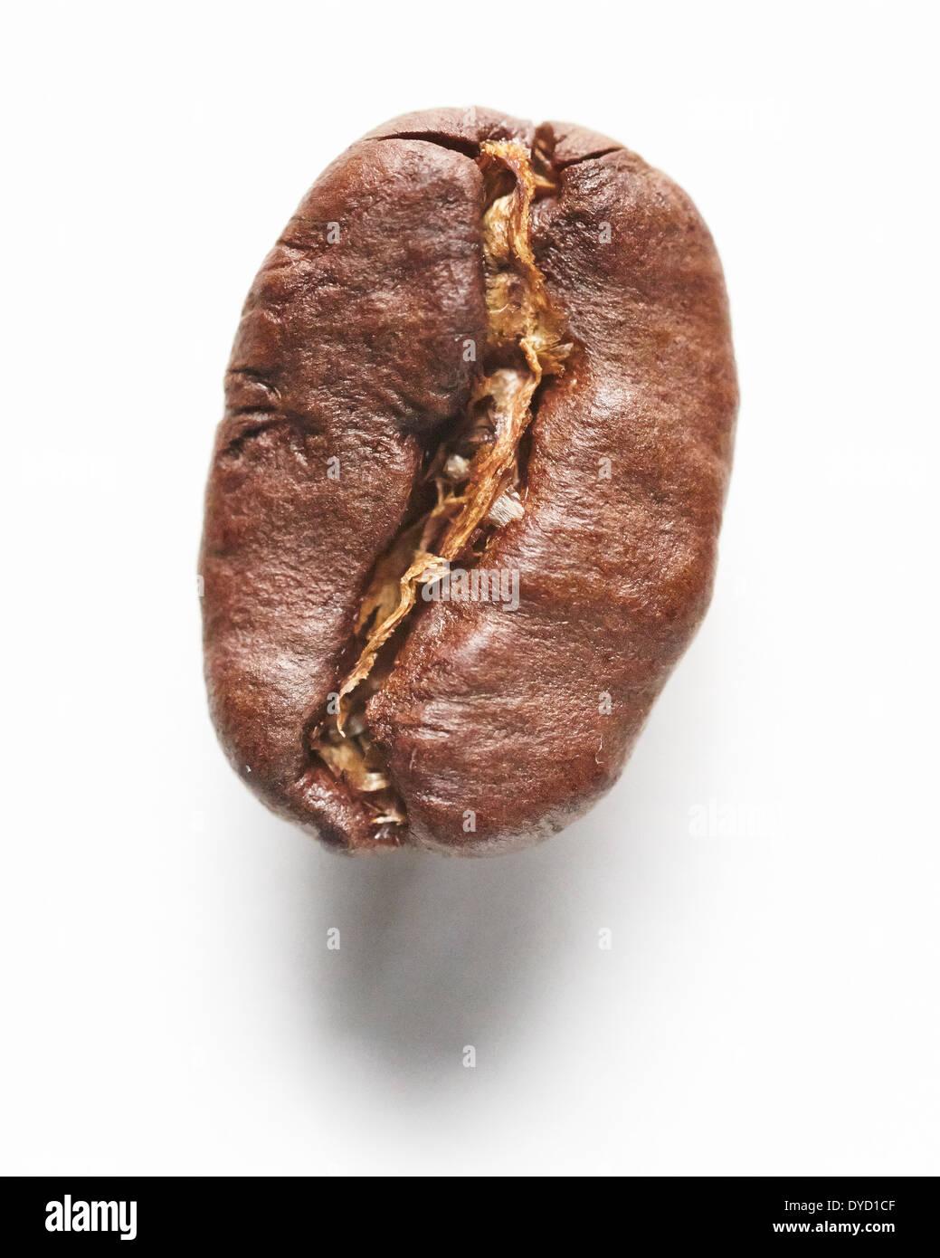 Coffee bean, closeup. - Stock Image