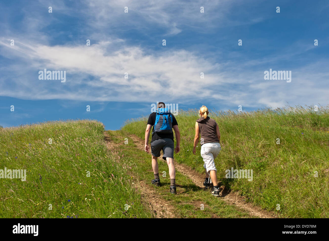 Young couple walking along a farm track across a summer meadow under blue sky, Baden-Wuerttemberg, Germany Stock Photo