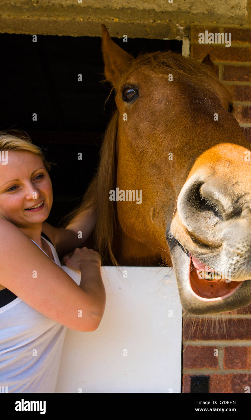 Young woman making a fuss of a horse at rescue centre. - Stock Image