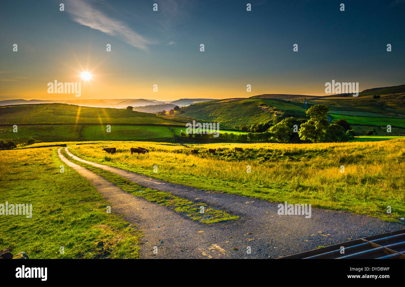 Late evening view of the rolling countryside in the Peak District. - Stock Image