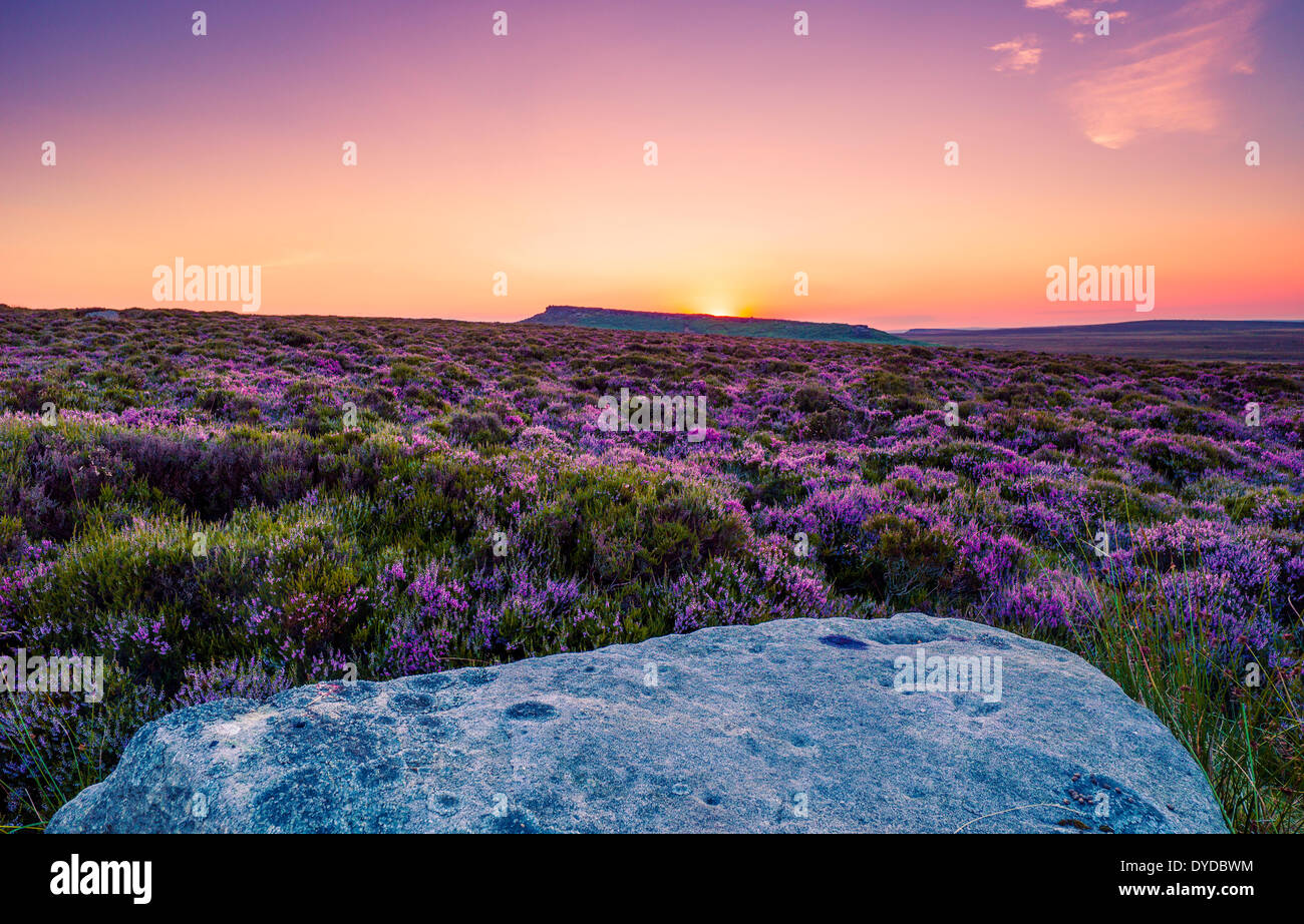 Sunset over Derbyshire heather moorland. - Stock Image