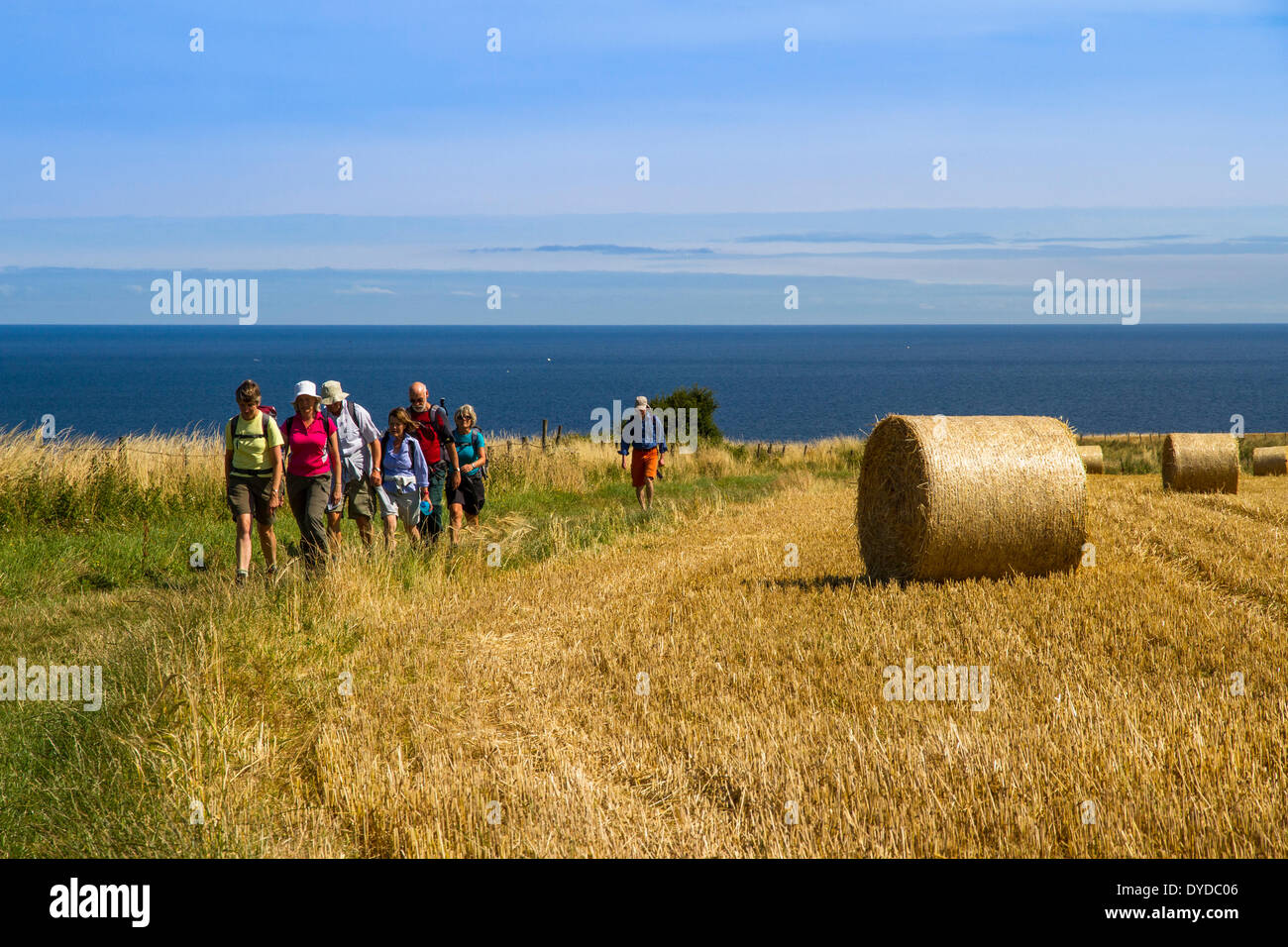 Walkers on the Cleveland Way. - Stock Image