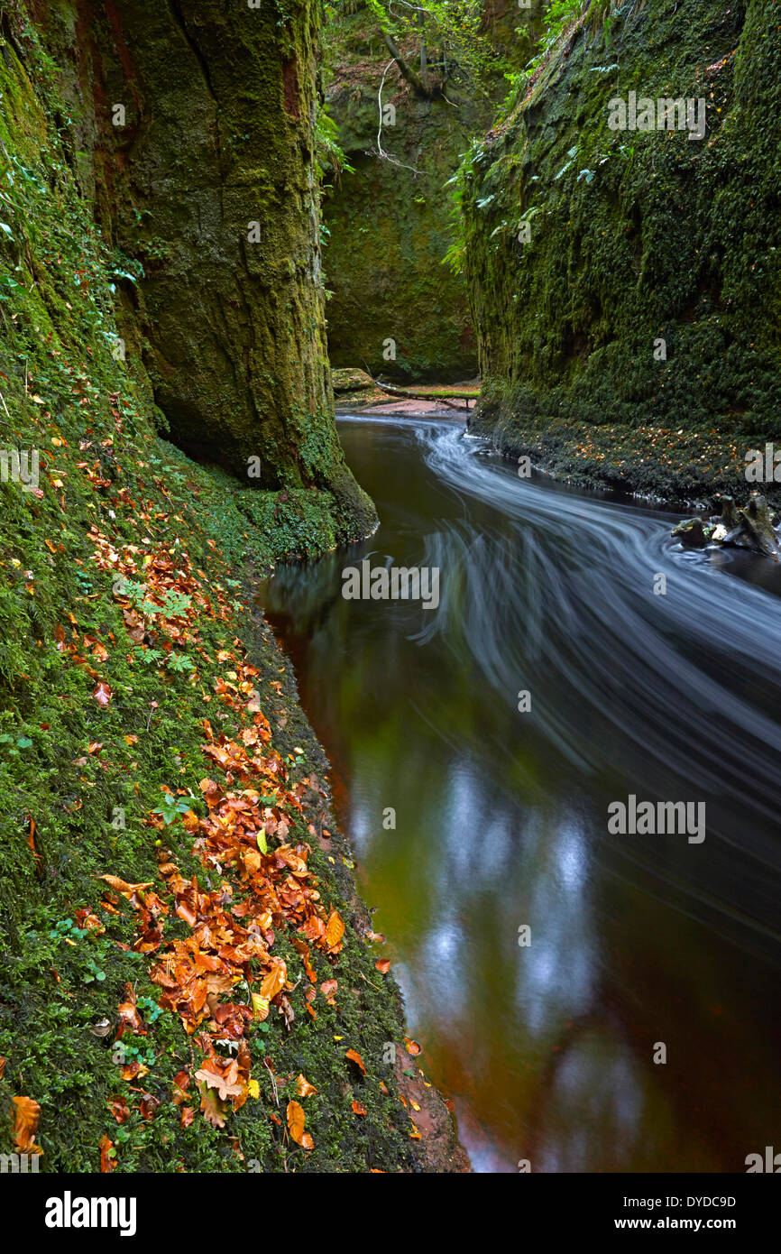 The Devils Pulpit gorge in Finnich Glen. - Stock Image