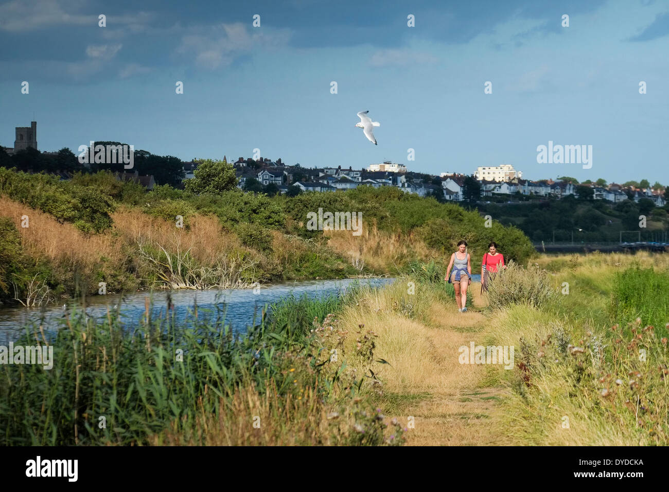 Two women walking in Two Tree Island nature reserve. - Stock Image