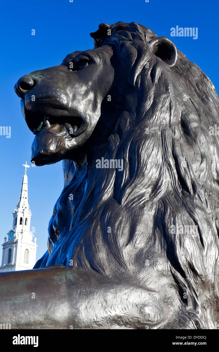 Lion statue and St Martin in the Fields church spire. - Stock Image