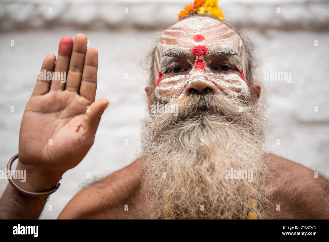 Portrait of a sadhu or holy man. Stock Photo