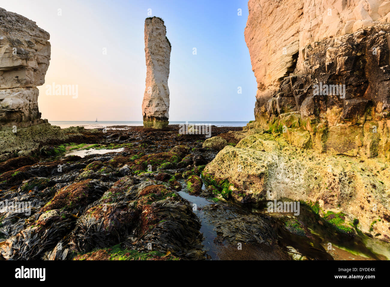 The bottom of the cliffs at Old Harrys Rock on a very low tide. - Stock Image