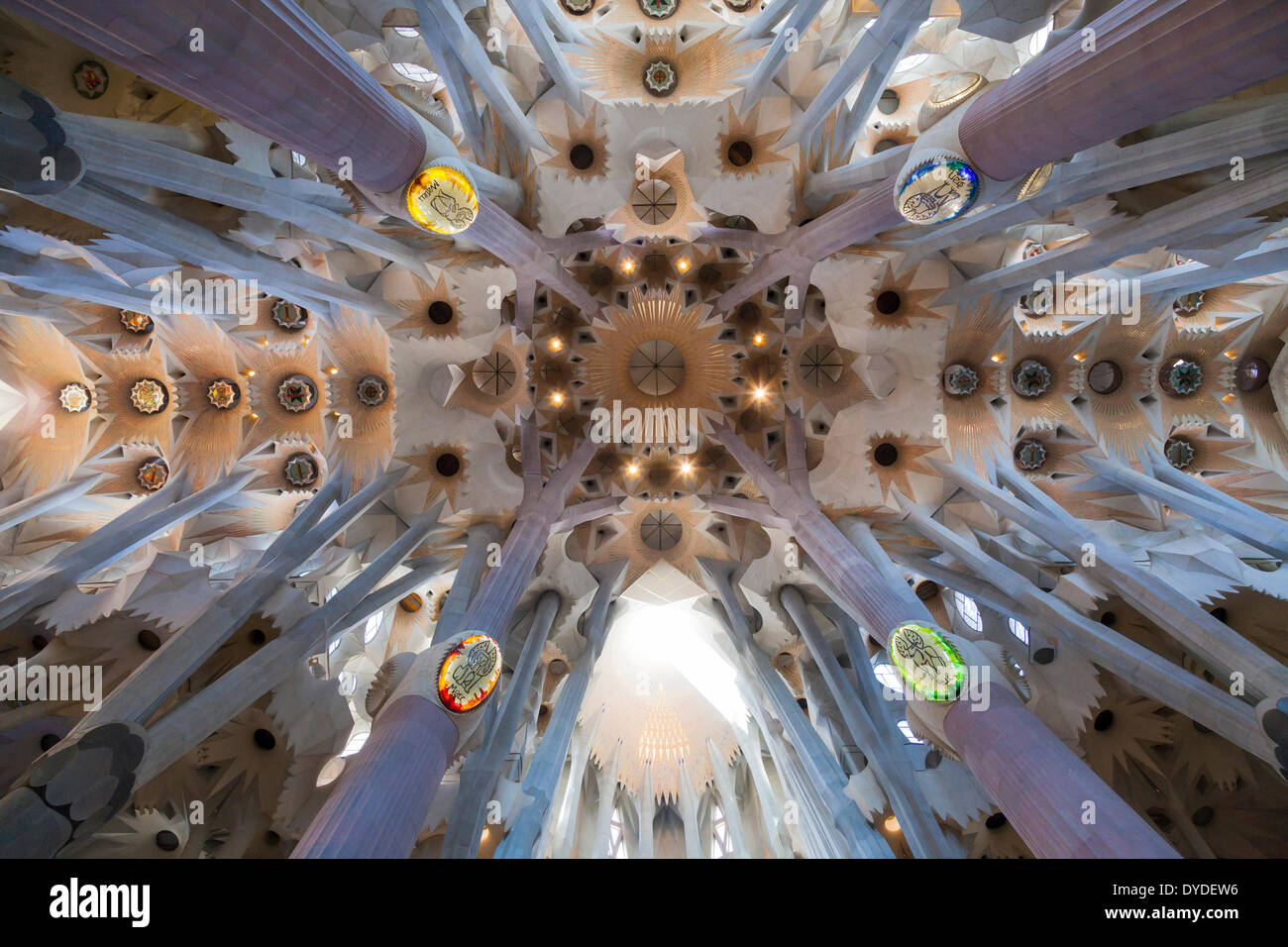 Looking up into the vaulted decorative transept ceiling of La Sagrada Familia Cathedral. Stock Photo