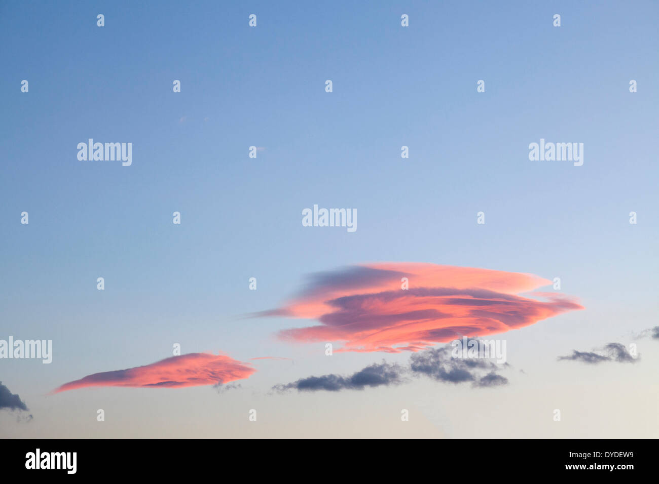 Evening pink clouds in blue sky. - Stock Image