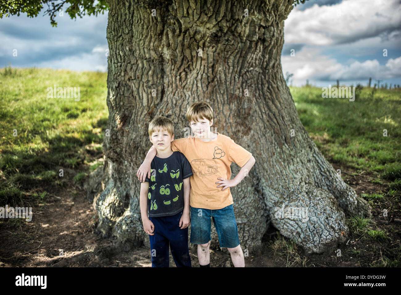 Two brothers standing under an ancient oak tree. - Stock Image