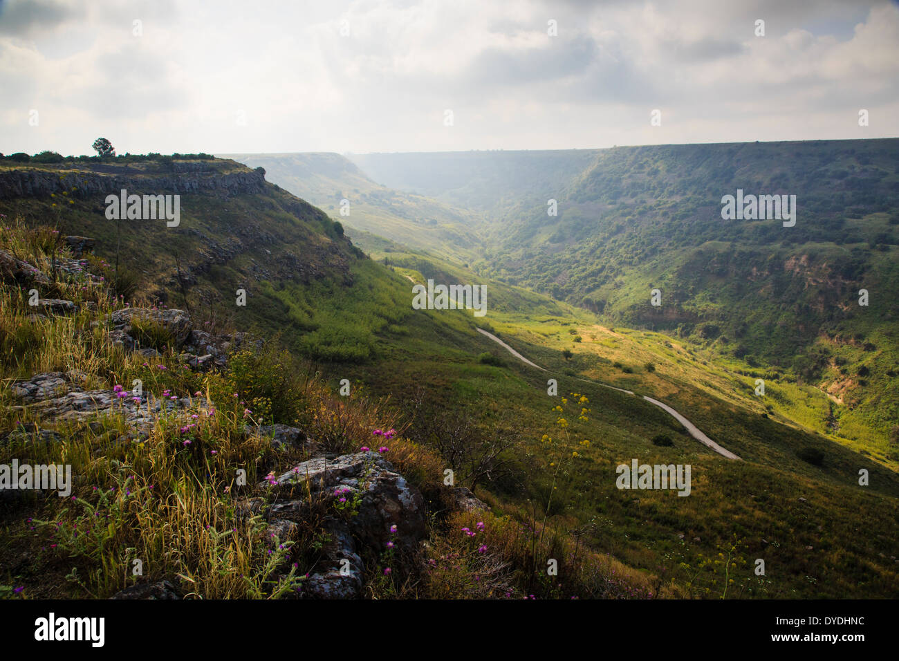 Gamla Nature reserve, Golan Heights, Israel. Stock Photo
