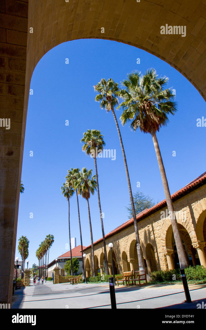 Palm trees through archway on Stanford University campus - Stock Image