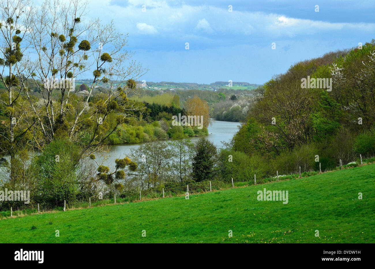Mayenne River in the spring landscape of northern Mayenne, wooded banks (poplars, willows, pines, wild cherry, oaks). Stock Photo