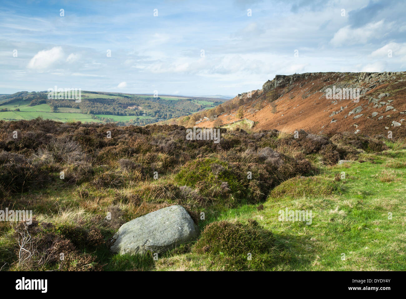 Clumps of faded heather and the view from Baslow Edge towards Curbar Edge and rolling wooded countryside beyond, Derbyshire, Peak District, England - Stock Image