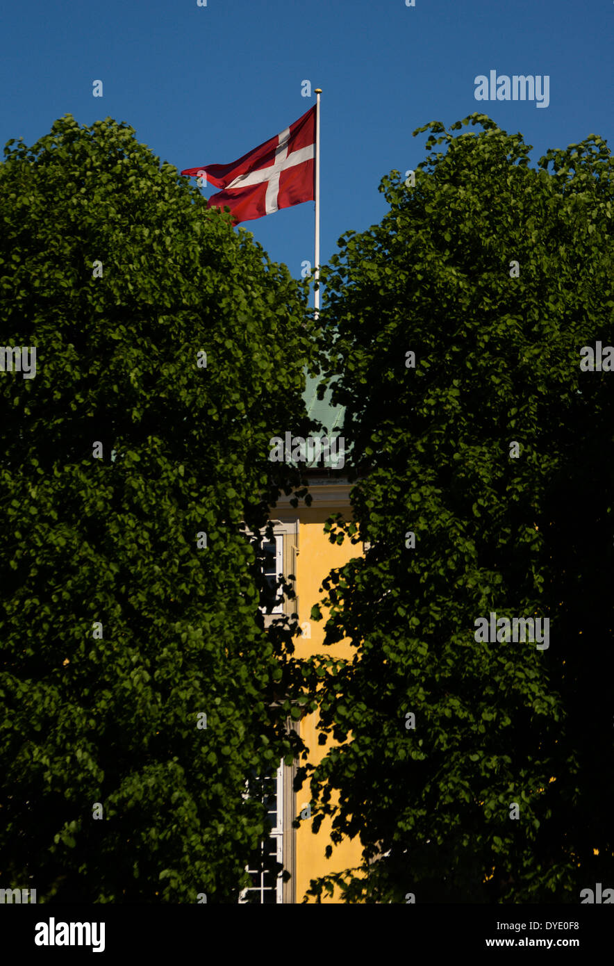 The Danish flag, Dannebrog, on a blue sky between green trees - Stock Image
